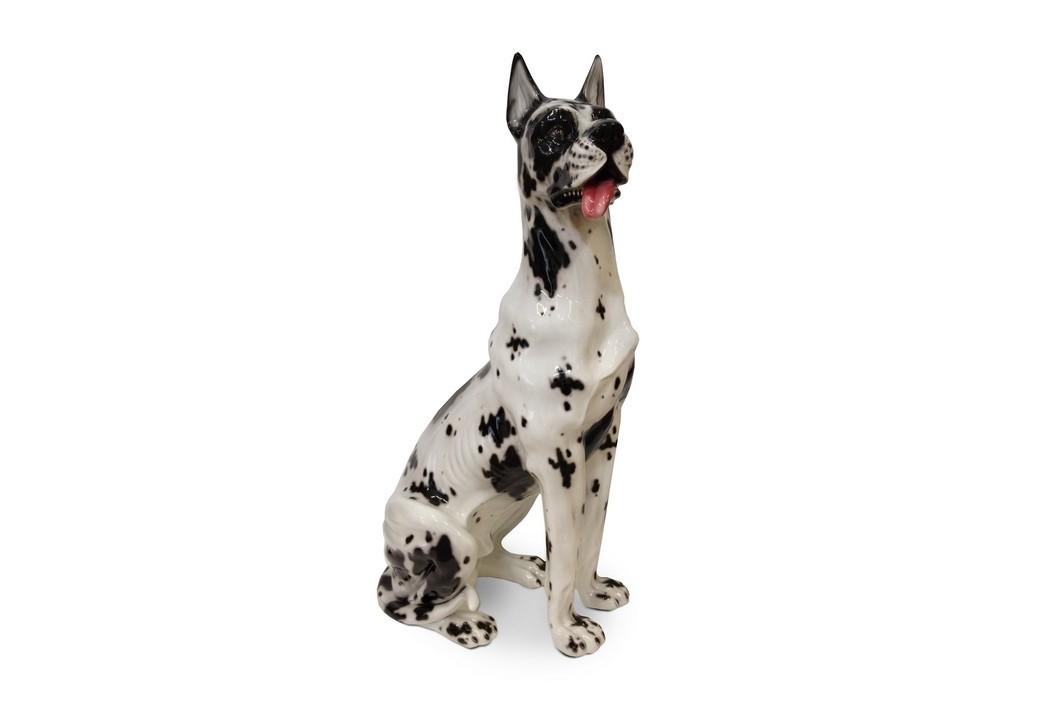 Cachorro Dog Alemão