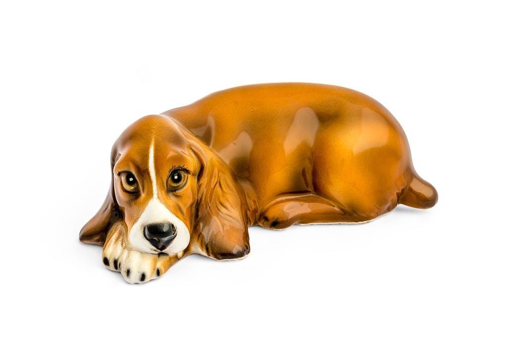 Cachorro Cocker Marrom Pequeno