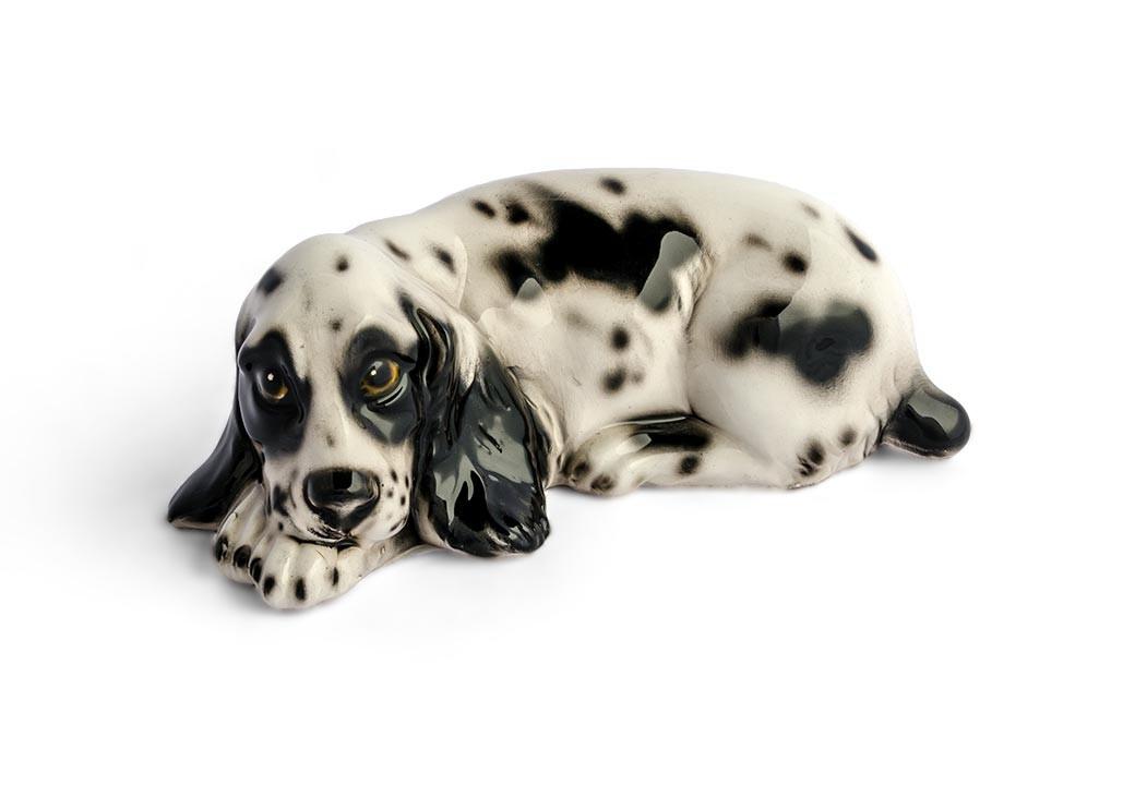 Cachorro Cocker Preto e Branco Pequeno