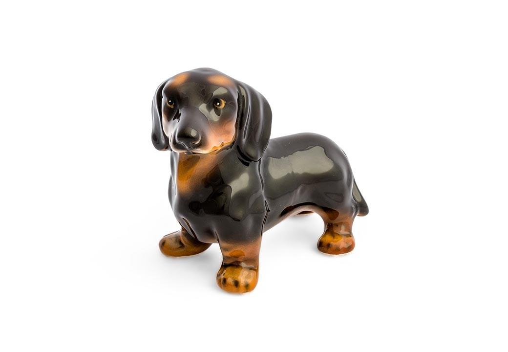 Cachorro Basset Dachshund Mini