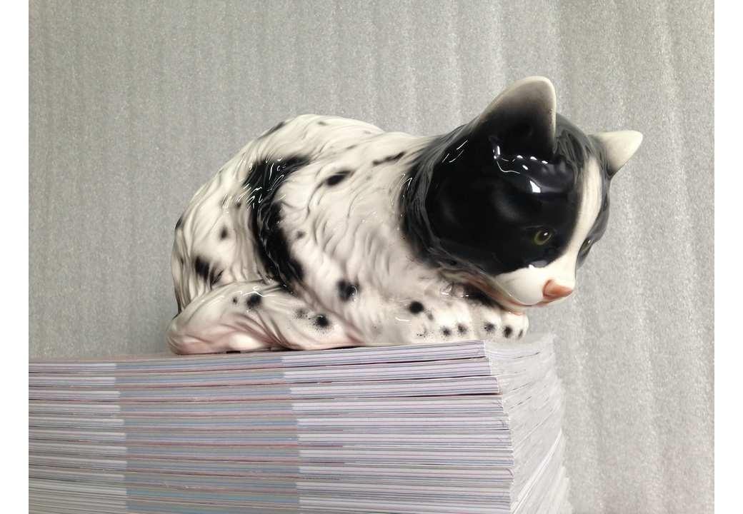 Gato Persa para Estante Preto e Branco