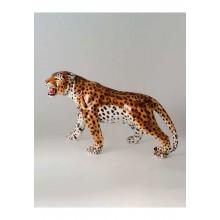 Leopardo andando